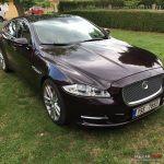Prodam Jaguar XJ-X351